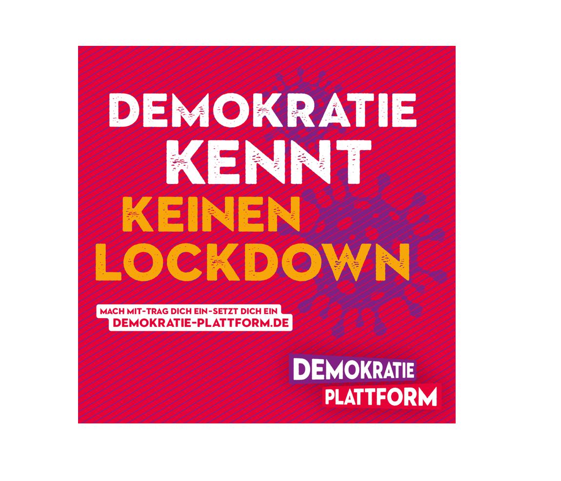 Vorstellung Demokratie-Plattform
